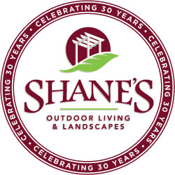 Shanes_seal_web